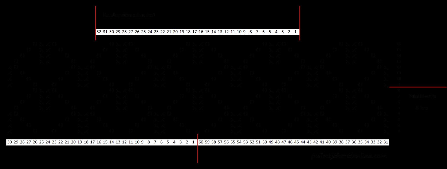 Kinos pitsisukat kaavio